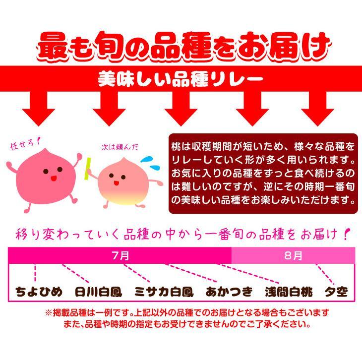 山梨産 笛吹の桃 1.5kg 品種おまかせ もも ピーチ フルーツ seikaokoku 04
