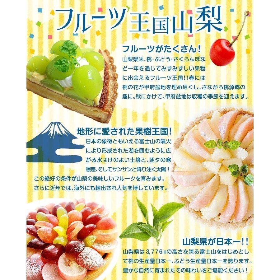 山梨産 笛吹の桃 1.5kg 品種おまかせ もも ピーチ フルーツ seikaokoku 06