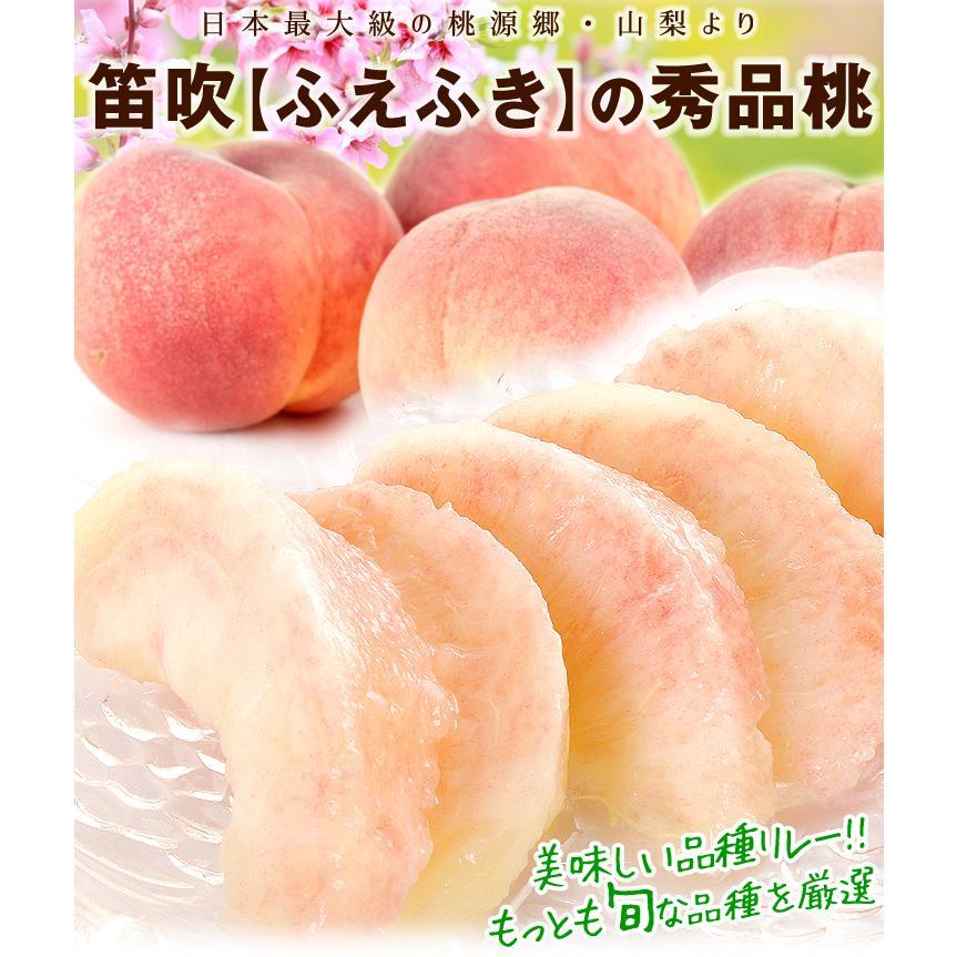 山梨産 笛吹の桃 1.5kg 品種おまかせ もも ピーチ フルーツ seikaokoku 07