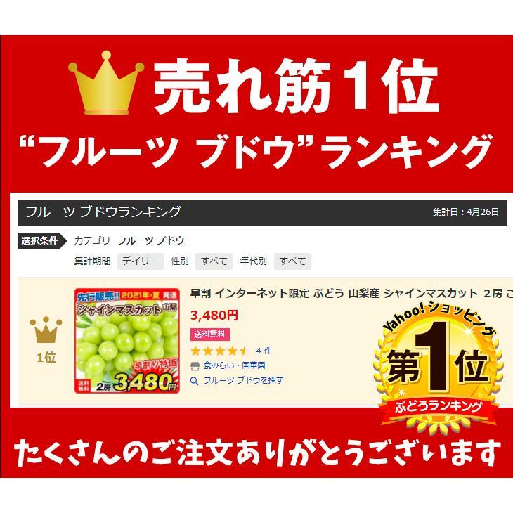 ぶどう 山梨産 シャインマスカット 2房 ご家庭用 seikaokoku 03