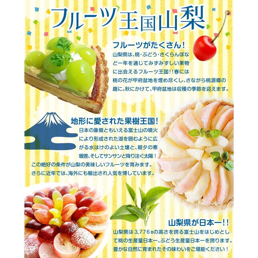 ぶどう 山梨産 シャインマスカット 2房 ご家庭用 seikaokoku 07