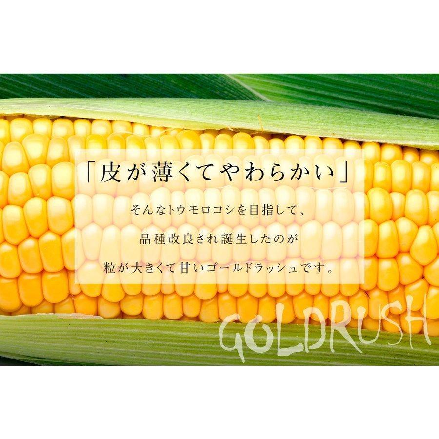 トウモロコシ 青森産 ゴールドラッシュ 10本 冷蔵便 甘い 生でも食べられる スイートコーン 野菜 国華園 seikaokoku 05