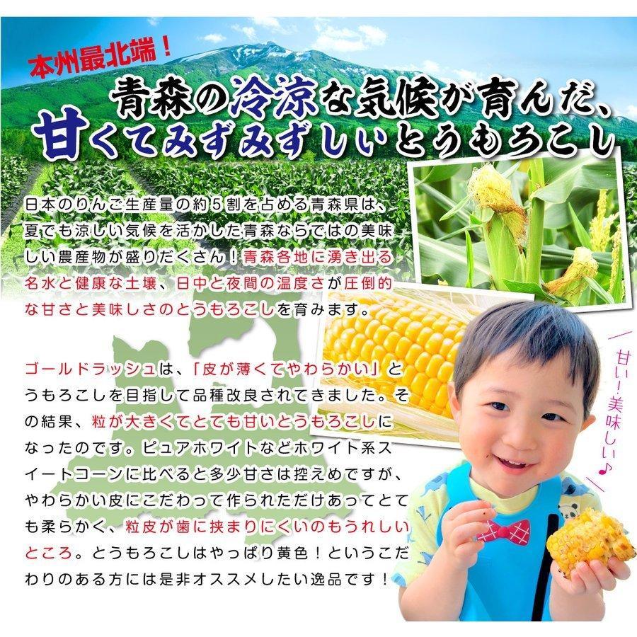 トウモロコシ 青森産 ゴールドラッシュ 10本 冷蔵便 甘い 生でも食べられる スイートコーン 野菜 国華園 seikaokoku 06