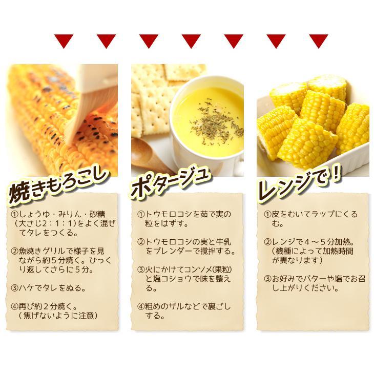 トウモロコシ 青森産 ゴールドラッシュ 10本 冷蔵便 甘い 生でも食べられる スイートコーン 野菜 国華園 seikaokoku 07