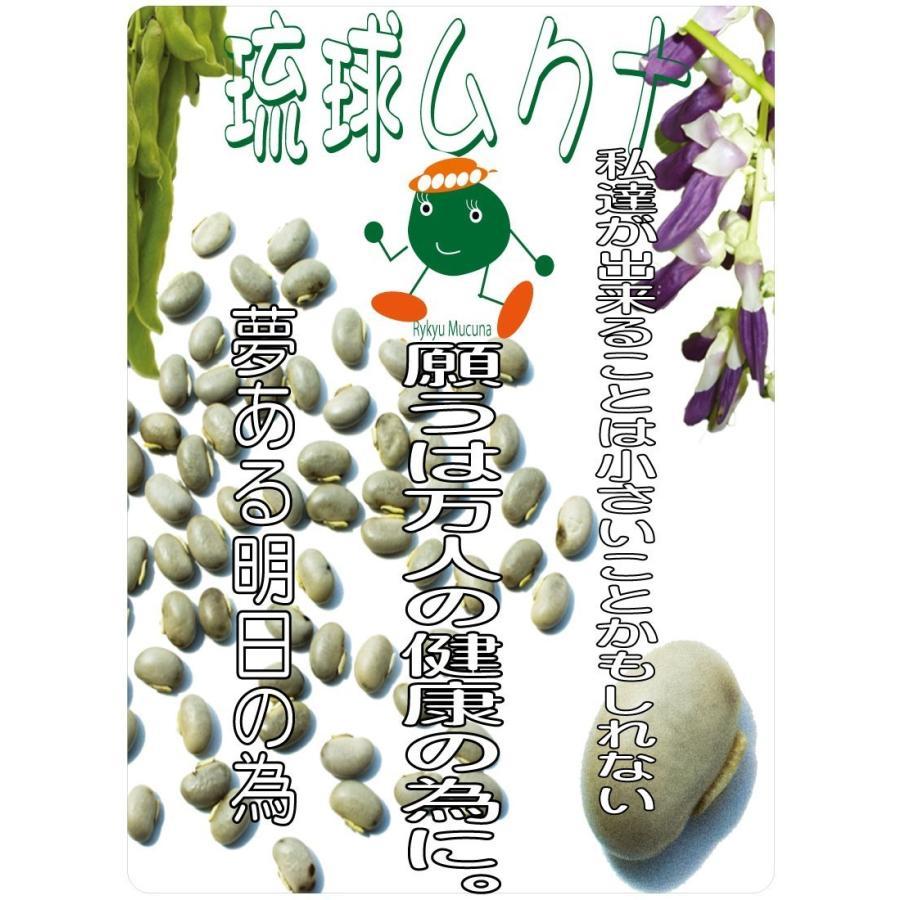 サプリメント ムクナ 琉球ムクナ(ムクナ豆・八升豆)熊本で栽培された無農薬の国産品(豆粉) 1袋 200グラム  Lドパー含有|seikatu|02