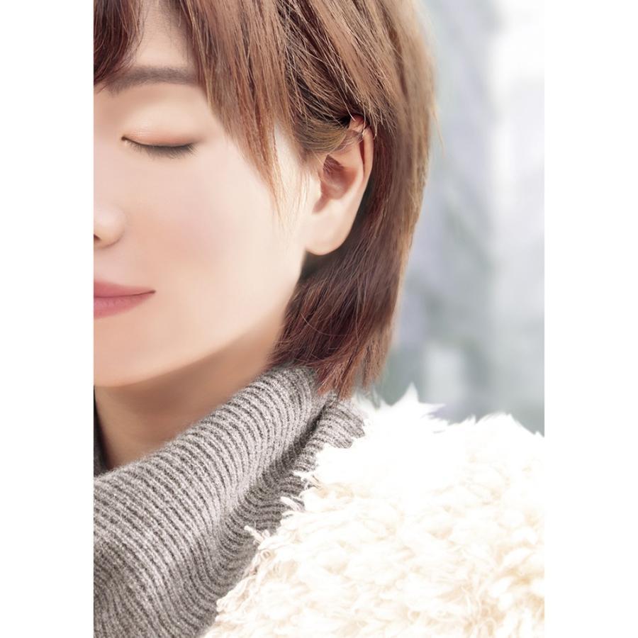 着画作成キット(ピアス) シーズンモデルフォト(秋冬) 37-5004 ササガワ seirindou 11