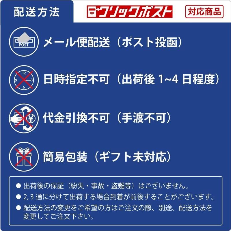 着画作成キット(ピアス) シーズンモデルフォト(秋冬) 37-5004 ササガワ seirindou 12