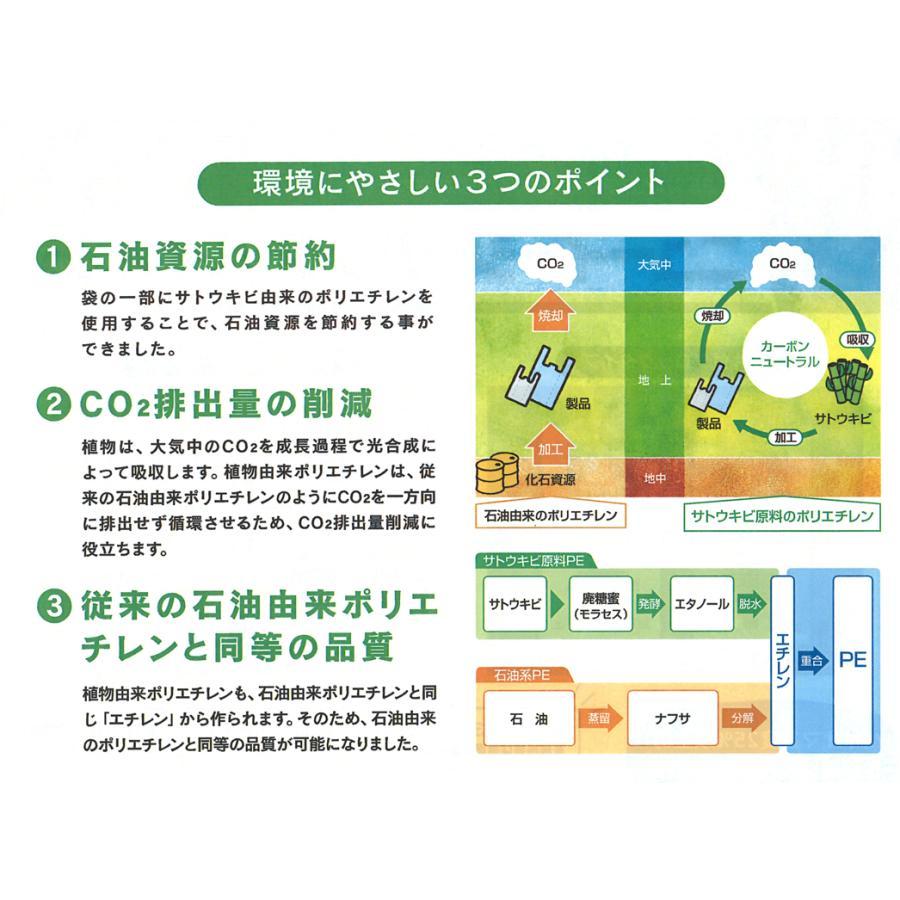 ニューイージーバッグバイオ25 3S 100枚入|sekiyama|02