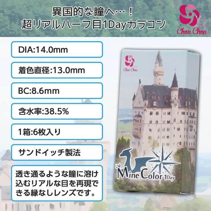 MineColor1Day/アシストシュシュマインカラーワンデー (度あり・度なし/1箱6枚入り/全8色/DIA14.0mm)コスプレ向け|select-eyes|10