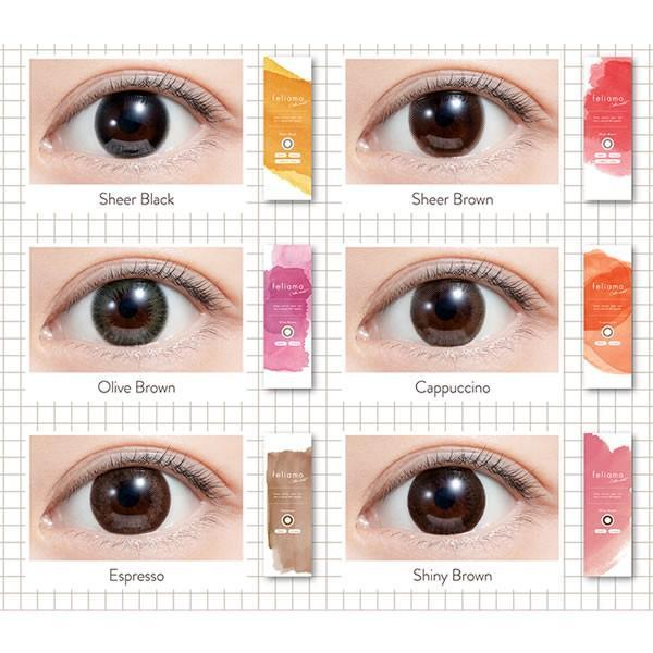 【2箱購入で1箱無料】フェリアモ ワンデーカラコン 2箱SET/feliamo/白石麻衣イメージモデル(10枚入り/9色) select-eyes 02