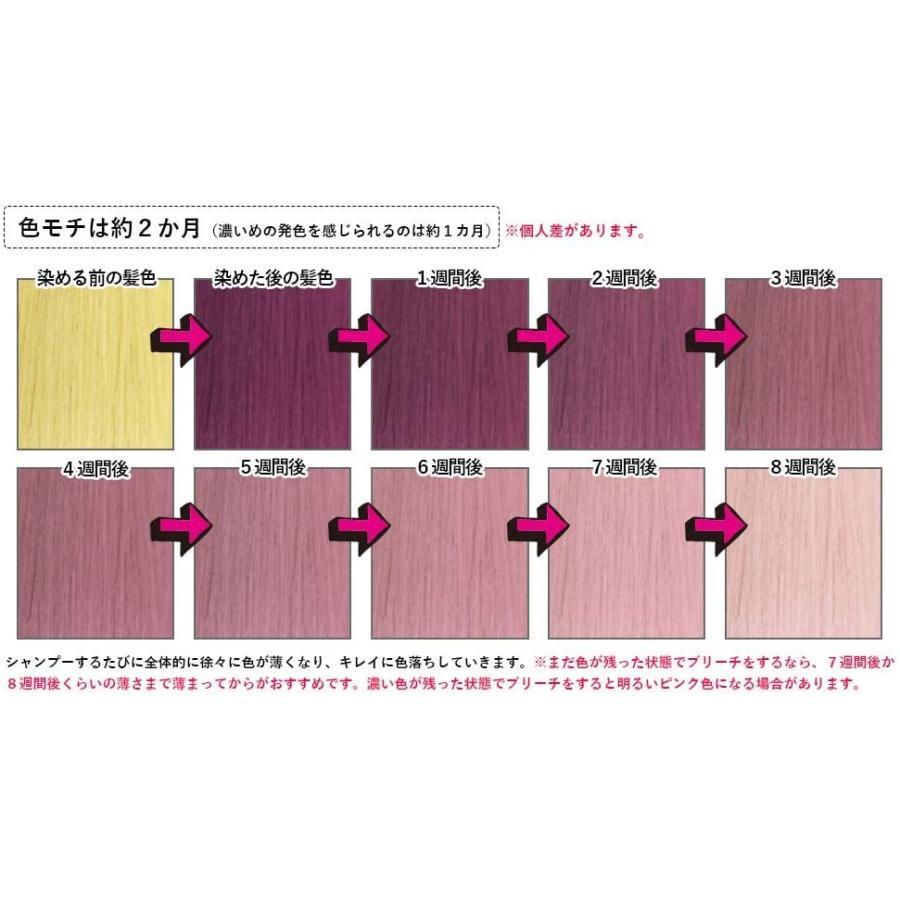 エンシェールズ カラーバター アッシュピンク 200g ヘアカラー|select-shop-rainbow|03