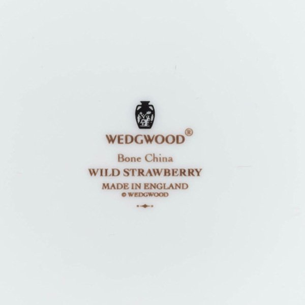 ウェッジウッド ワイルドストロベリー アクセント(タンジェリン)20cmプレート|selectors|04