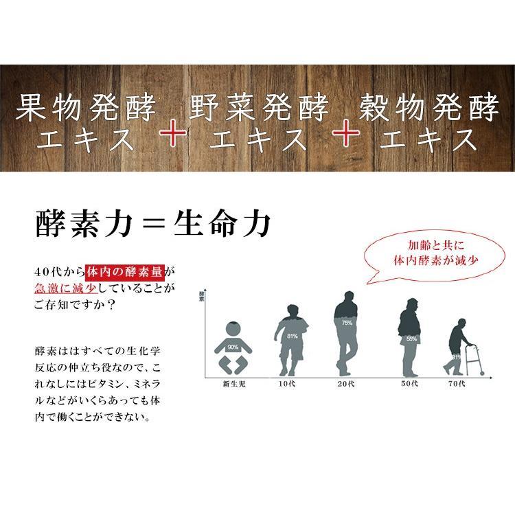 多加米酵素 300ml ファスティング 酵素 ドリンク ダイエット プチ断食  ENZYME 日本製 無農薬 seles-eshop 02