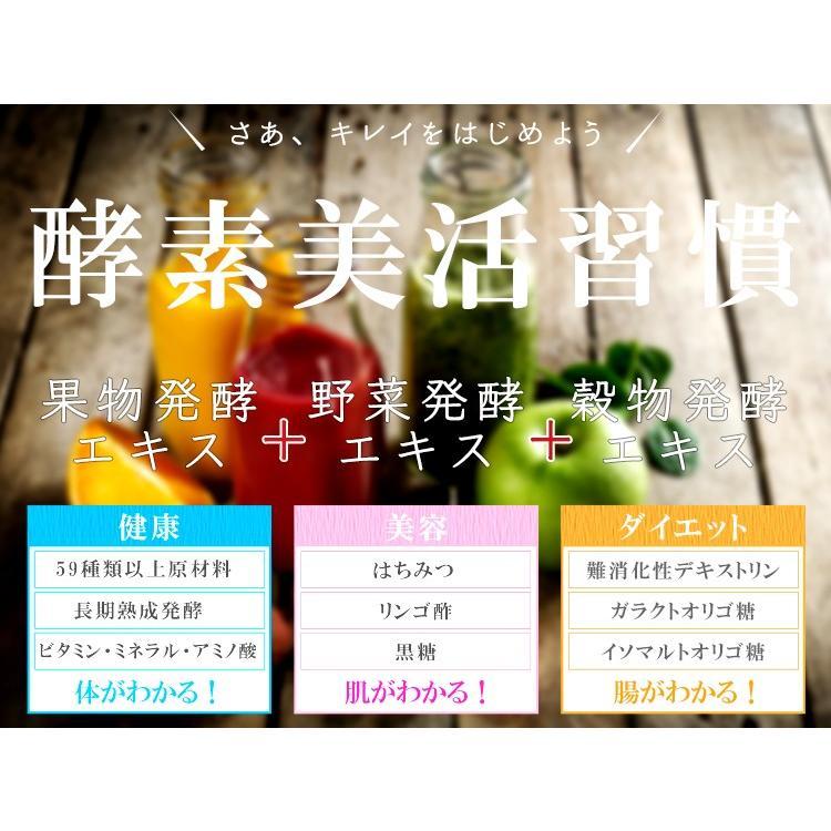 多加米酵素 300ml ファスティング 酵素 ドリンク ダイエット プチ断食  ENZYME 日本製 無農薬 seles-eshop 04