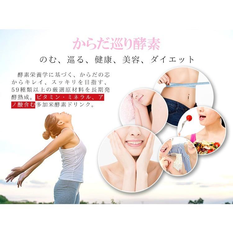 多加米酵素 300ml ファスティング 酵素 ドリンク ダイエット プチ断食  ENZYME 日本製 無農薬 seles-eshop 06