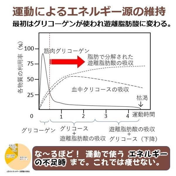 背中クールタイは 肩甲骨の周りにある褐色脂肪細胞を増やし活性化。基礎代謝を上げる ミトコンドリアを増やす スタミナアップ 若返る 健康グッズ ダイエット器具|senakacool|04