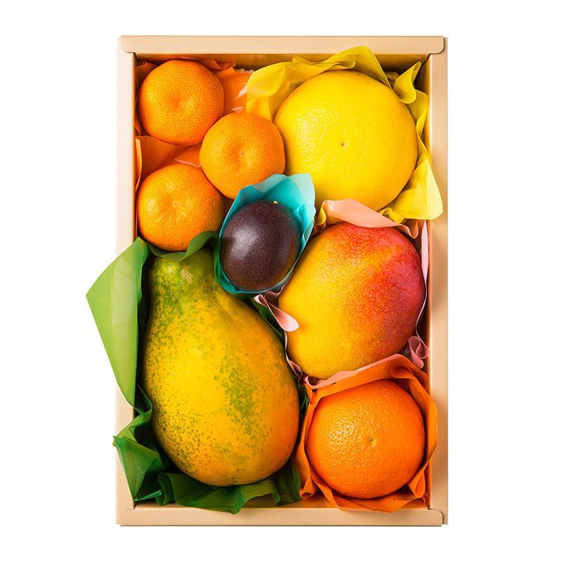 千疋屋 ギフト 果物詰合せ(季節の果物、5〜6種類程) 京橋千疋屋|senbikiya|02