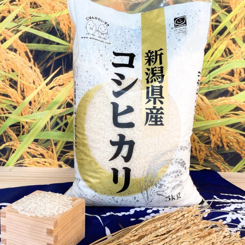 お米 10kg(5kg×2) 新潟県産コシヒカリ 令和2年産|senda|02