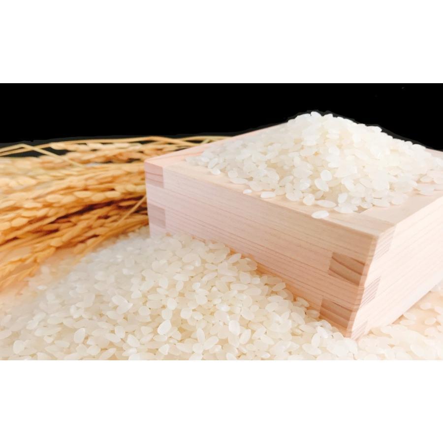 お米 10kg(5kg×2) 新潟県産コシヒカリ 令和2年産|senda|04