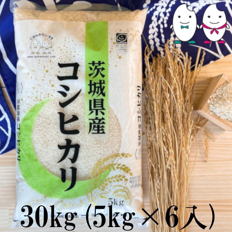 お米 30kg(5kg×6) 茨城コシヒカリ 令和2年産 senda