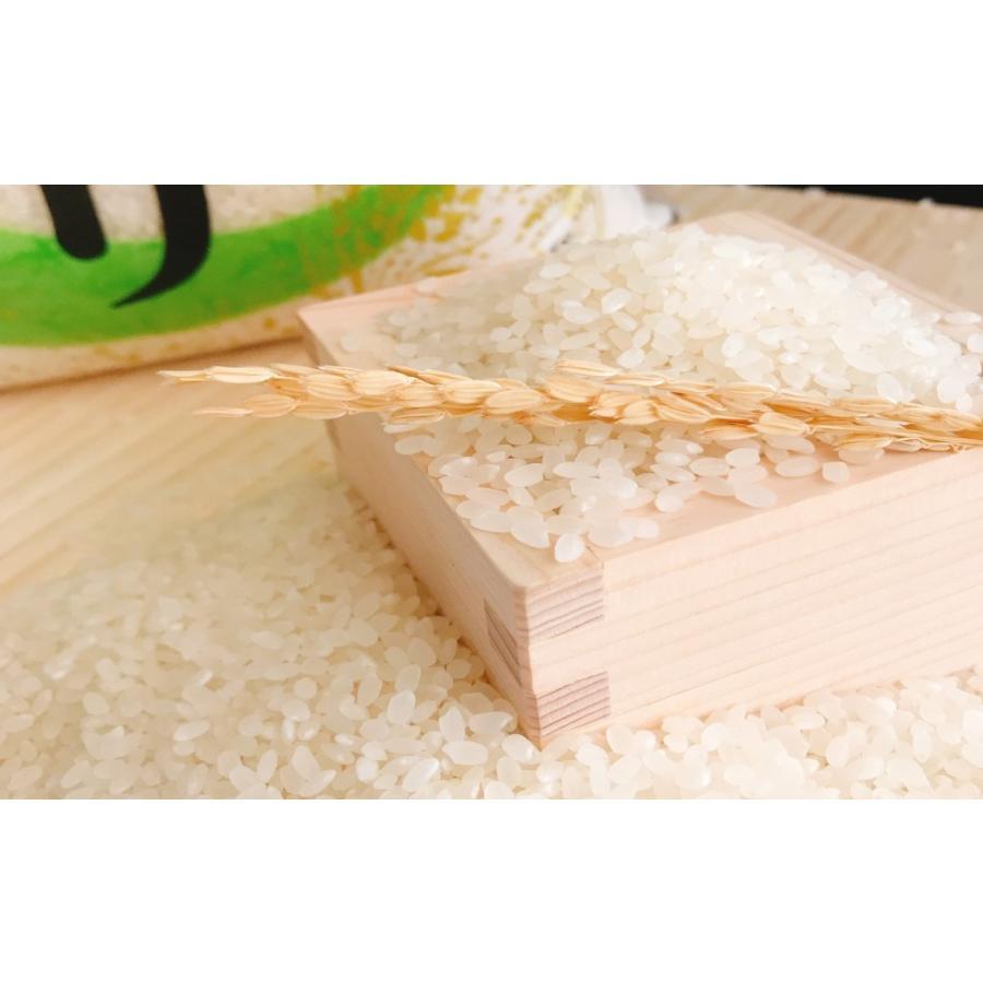 お米 30kg(5kg×6) 茨城コシヒカリ 令和2年産 senda 03