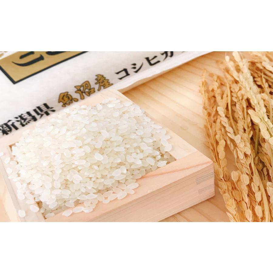 お米 10kg(5kg×2) 新潟県魚沼産コシヒカリ 令和2年産|senda|04