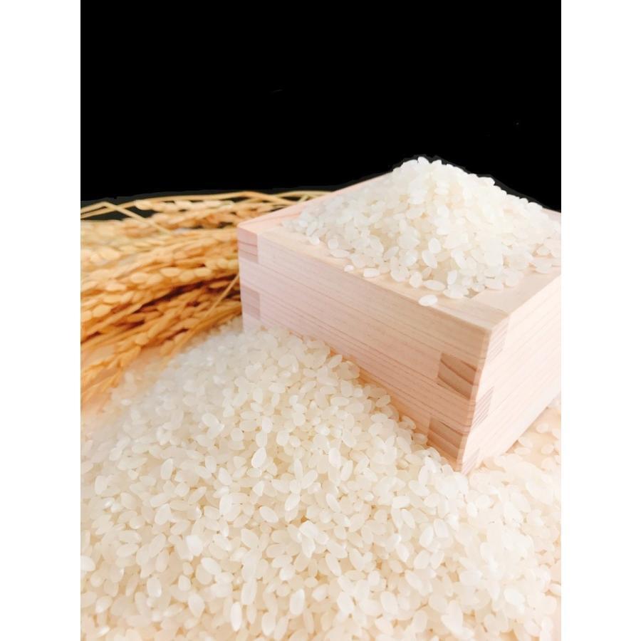 お米 10kg(5kg×2) 山形県産はえぬき 令和2年産|senda|03