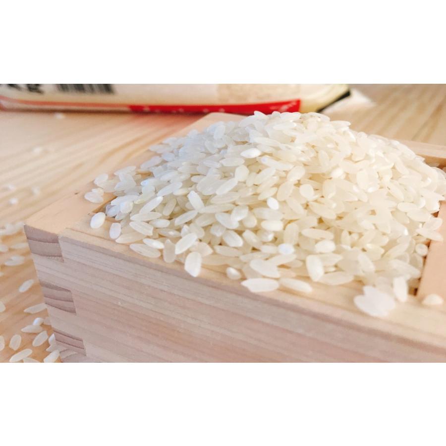 お米 10kg(5kg×2) 米国産カルローズ|senda|04