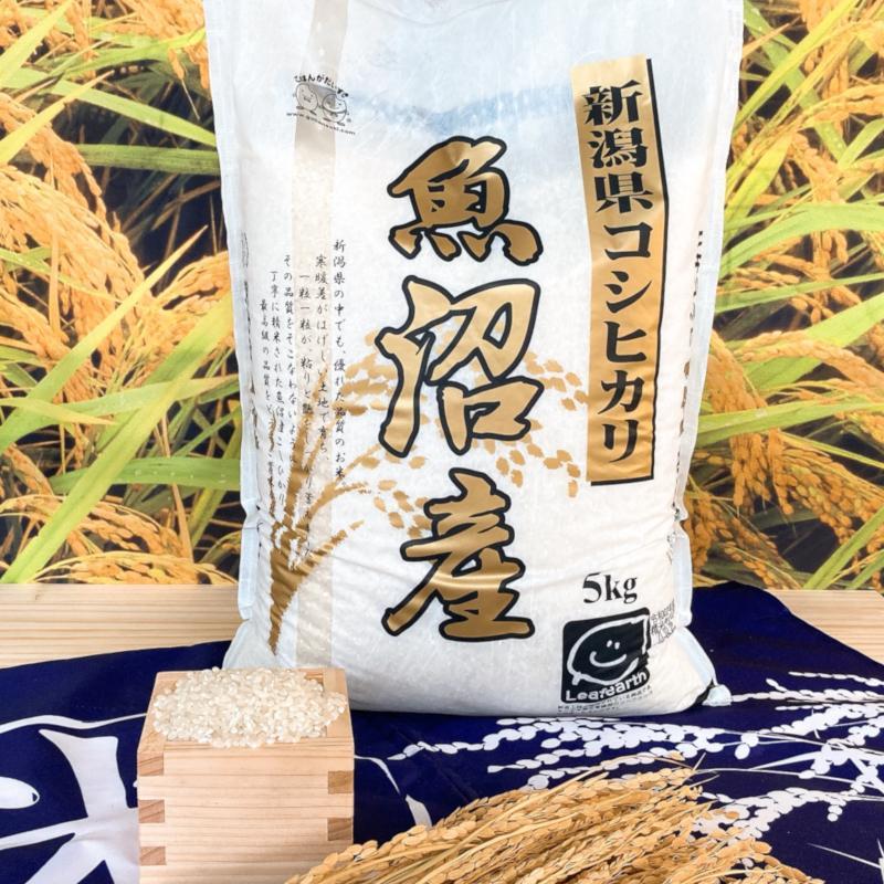 お米 5kg 新潟県魚沼産コシヒカリ 令和2年産|senda|02