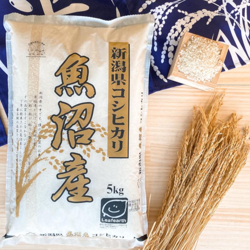 お米 5kg 新潟県魚沼産コシヒカリ 令和2年産|senda|05