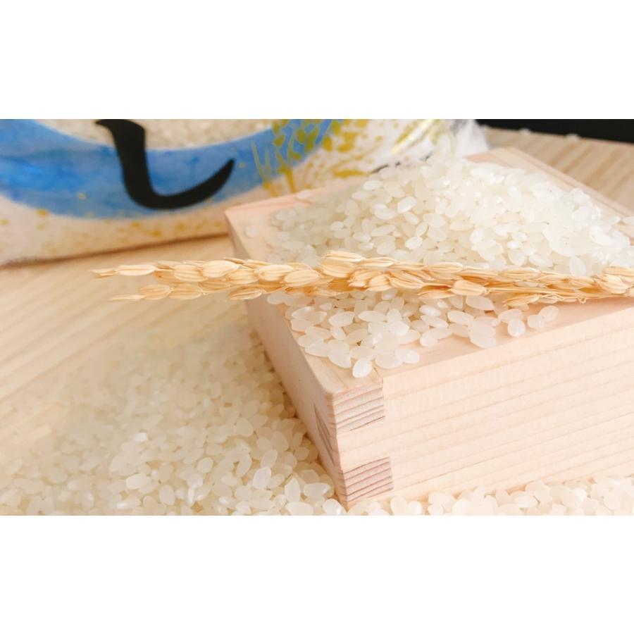 お米 30kg(5kg×6) 北海道ななつぼし 令和2年産|senda|03