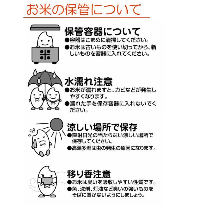 お米 10kg(2kg×5) 生産情報公表JAS認証 北海道北竜町産ななつぼし 令和2年産|senda|05