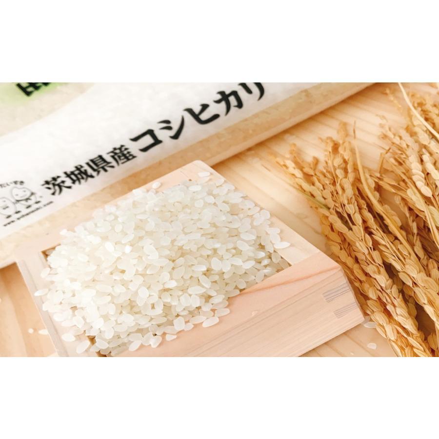 お米 10kg(5kg×2) 茨城県産コシヒカリ 令和2年産|senda|04