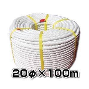 エステルSロープ【巻売】 20φx100m 舫やアンカーロープに!