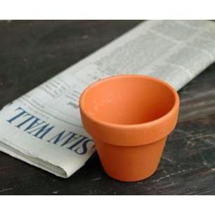 爆買い新作 植木鉢 2.7インチA6 ドイツ鉢 WEB限定