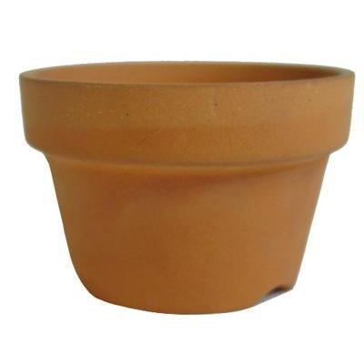 植木鉢 推奨 2号 朱温鉢 日本製 スーパーセール期間限定 浅鉢 素焼