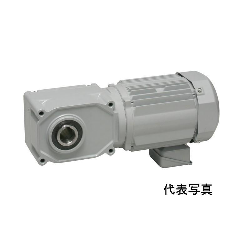 ニッセイ FF40T40-MP08TNNTJ2 IE3中型FシリーズFF(中実軸) 三相200V ブレーキ付 0.75KW フランジ付 手動解放ブレーキ付き