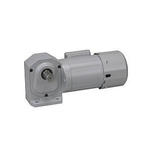 ニッセイ ギアモータ 直交軸 H2L32H10-WD08TWNEV4 脚取付 防水 0.75kW 三相400V 防水ブレーキ付