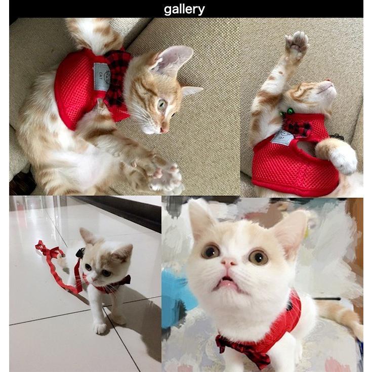 猫 犬 ハーネス リード ペット メッシュ 服  ウェアハーネス 胴輪 キャット ドッグ リーシュ リボン|sevenbridge|04