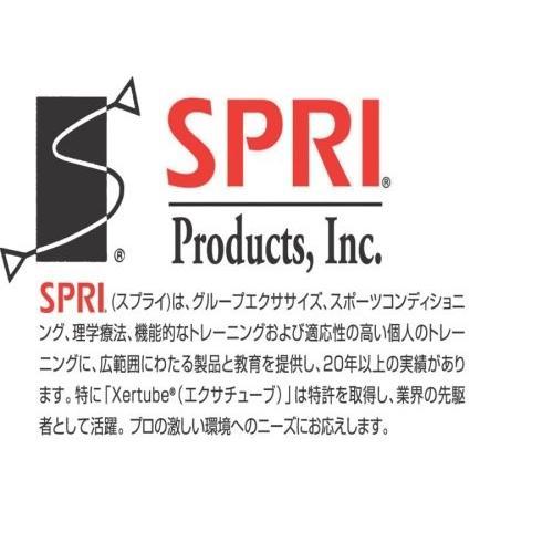 SPRI(スプライ) エクササイズボール Proプラス55cm スレート SXBPP55 Slate