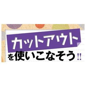 [LoveMyMemories] ラブマイメモリーズ+(プラス)Vol.11(2019年夏-2019秋号) shalala-mart 06