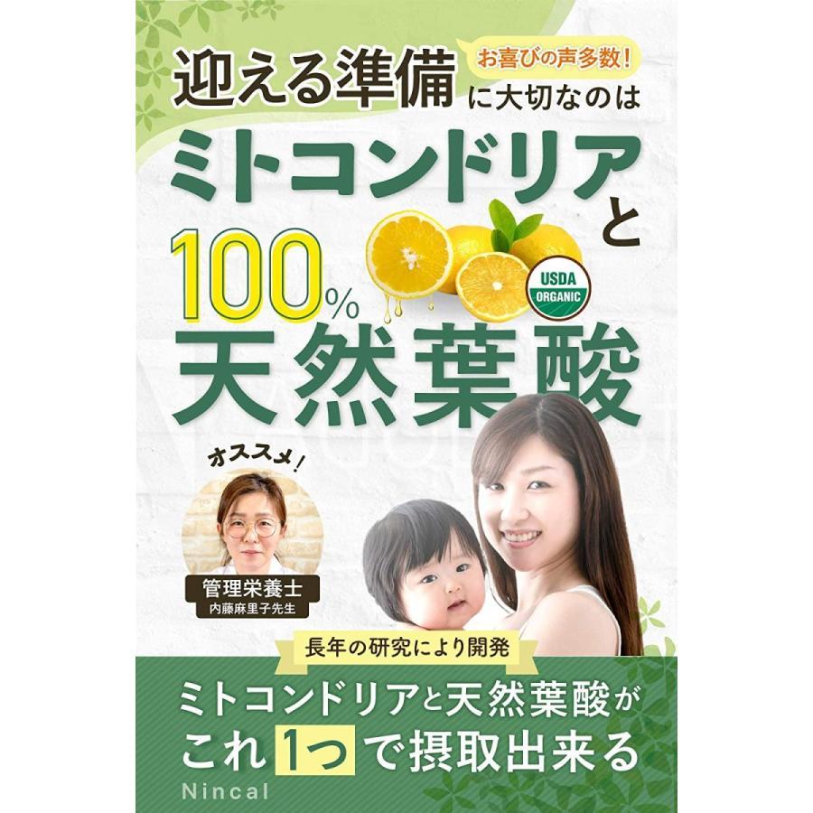 110 番 サプリ 葉酸