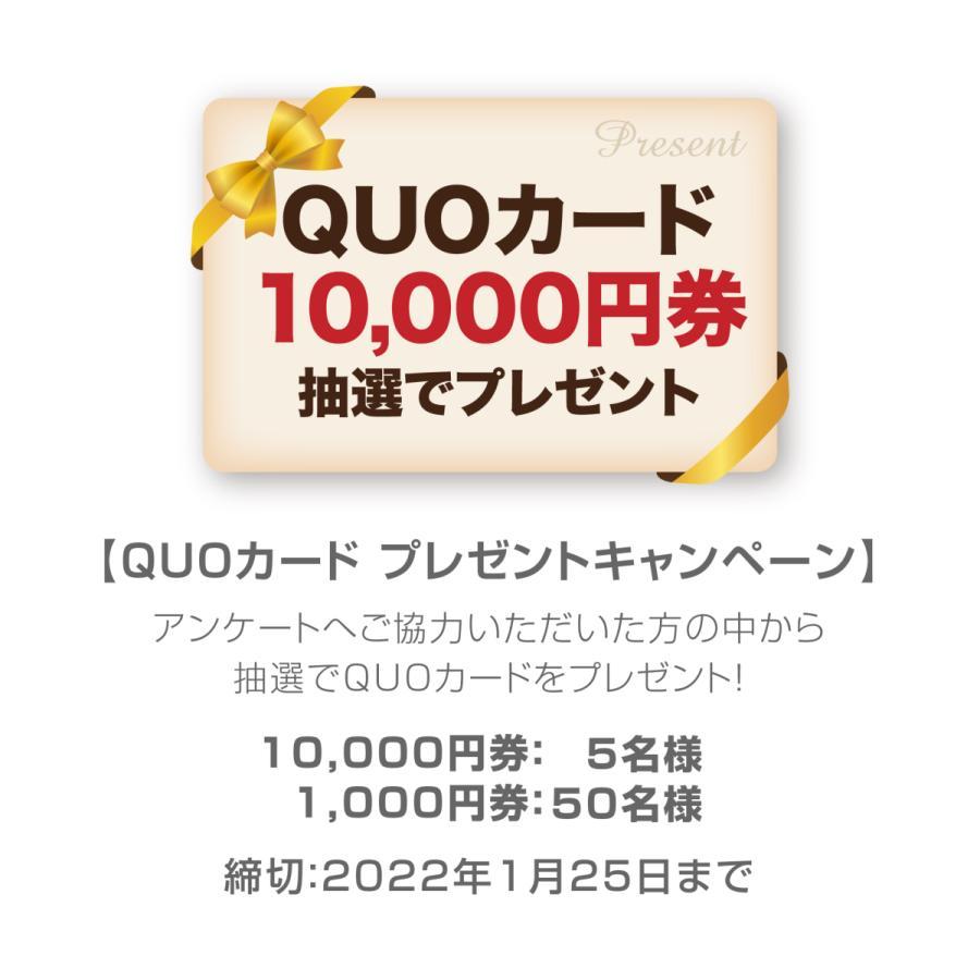 カレンダー 2022 壁掛け 大型サイズ 日本のパワースポット L-10 プラスチック・ホルダー付 令和4年 写真工房|shashinkoubou|08