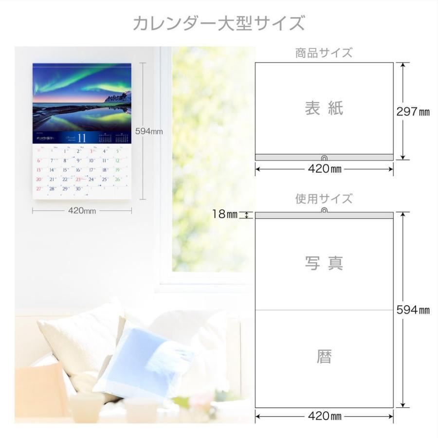 カレンダー 2022 壁掛け 大型サイズ オーロラの彼方へ L-26 プラスチック・ホルダー付 令和4年 写真工房 shashinkoubou 06
