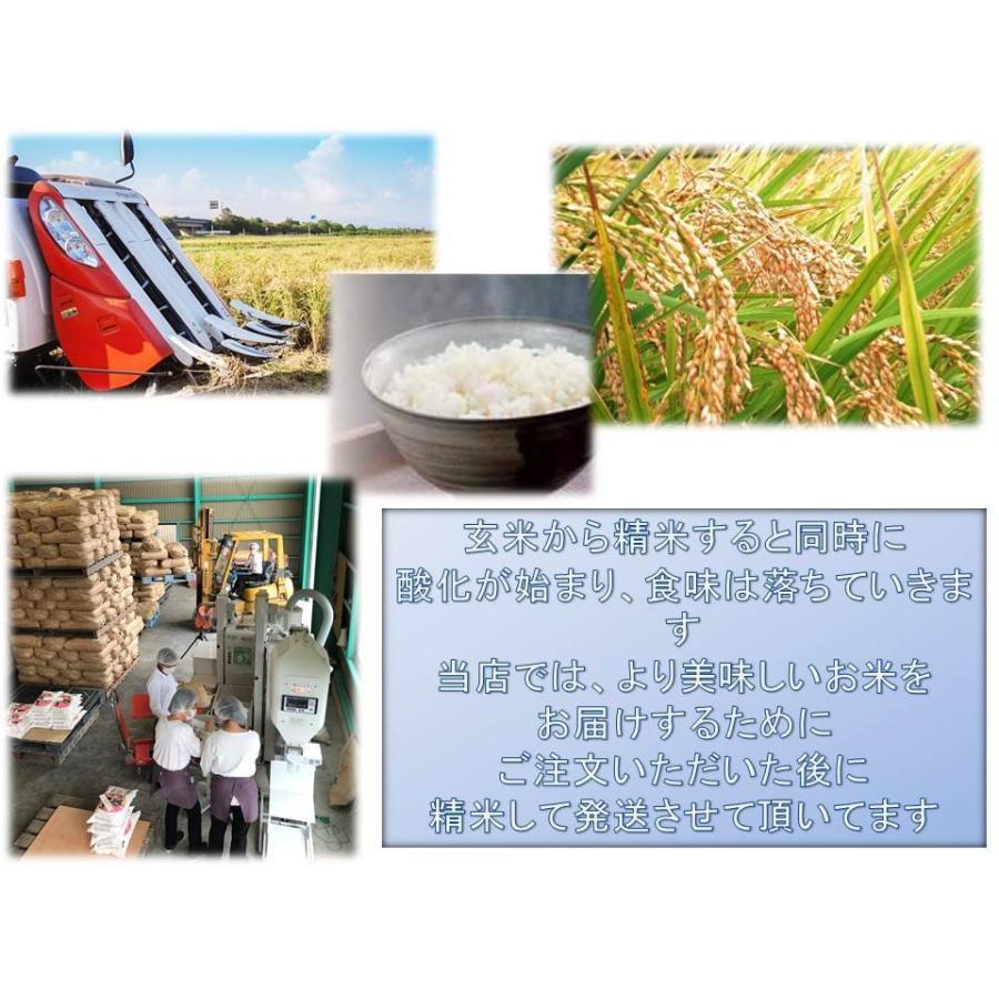滋賀県WEB物産展 令和2年産 信長舞(近江米)こしひかり 5kg無洗米 shiawaseen 04