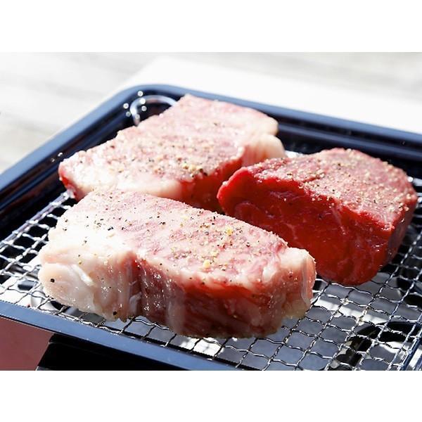家庭用 卓上焼肉コンロ 焼き肉コンロ 焼肉屋さん  一人焼肉 カニ焼き 屋台横丁 の焼肉モデル いろり屋|shibaden|03