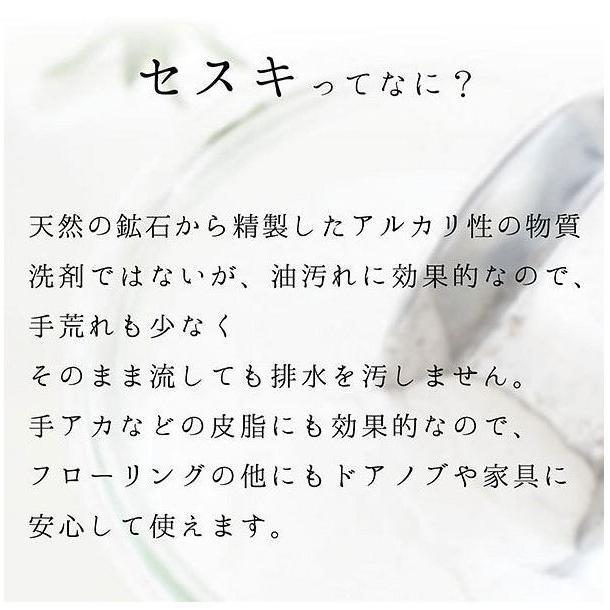 セスキの激落ちくん シートフローリング用20枚入 SS−225 レック|shichikuya|07