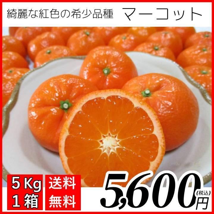 【送料無料】マーコット(5kg×1箱)|shige-mikan