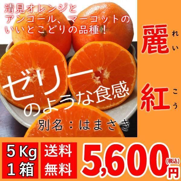 <送料無料>麗紅[れいこう](5kg×1箱)|shige-mikan