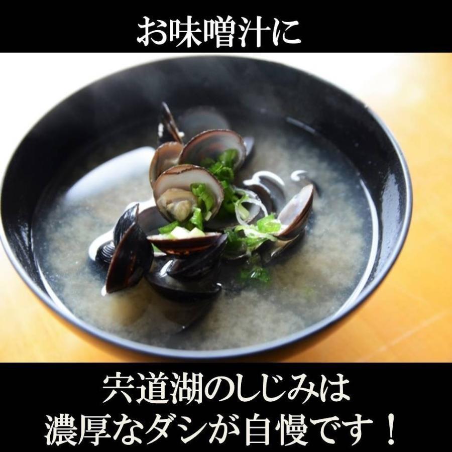 シジミ 宍道湖産 Lサイズ 1kg 送料無料 冷凍|shijimikaki-nishio|04